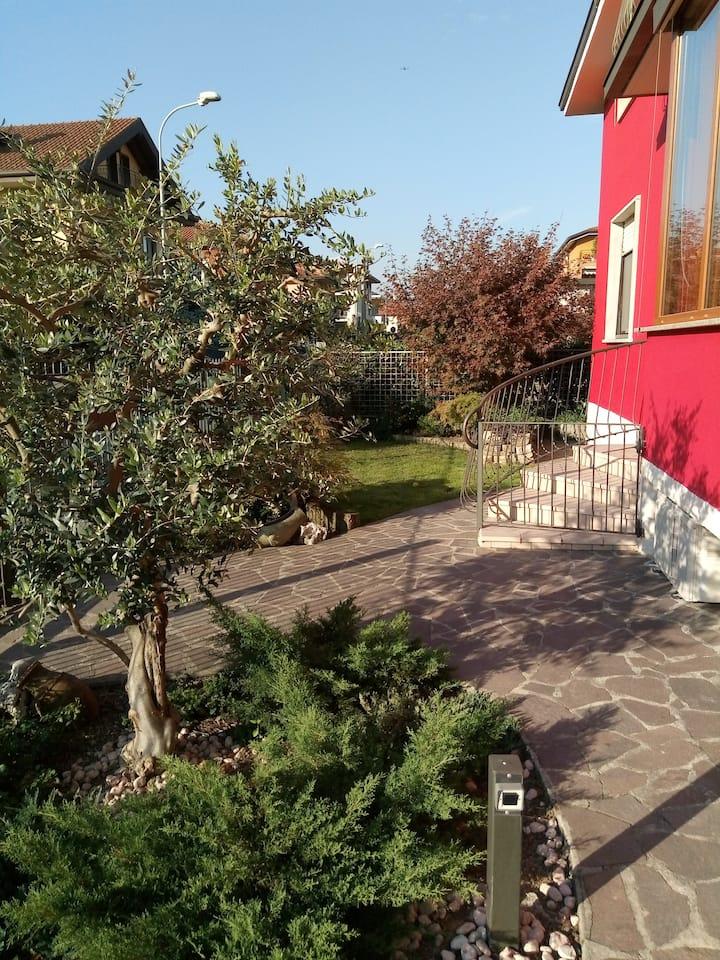 Coccinella  alle porte della città di Bergamo