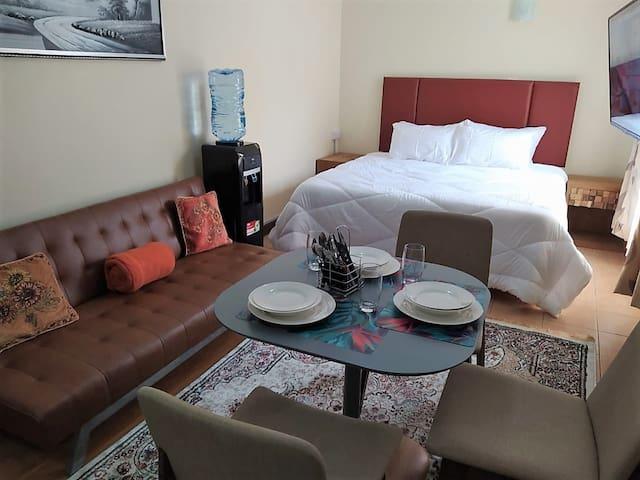 Emeli Suites Luxury Studio apartment 105