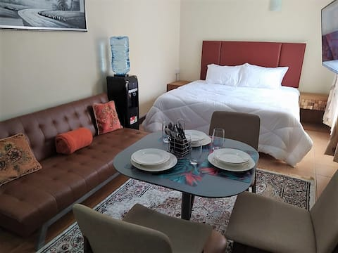 Emeli Suites Luxury Studio apartment 105