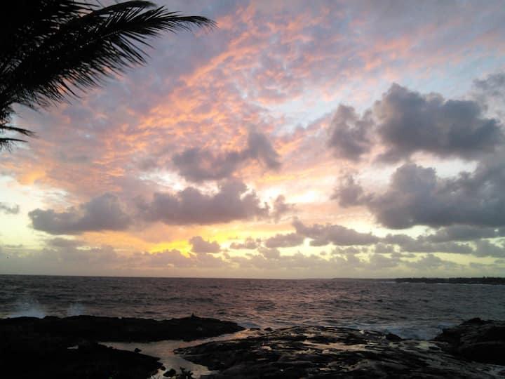 """""""Patti's Aloha Paradise"""""""
