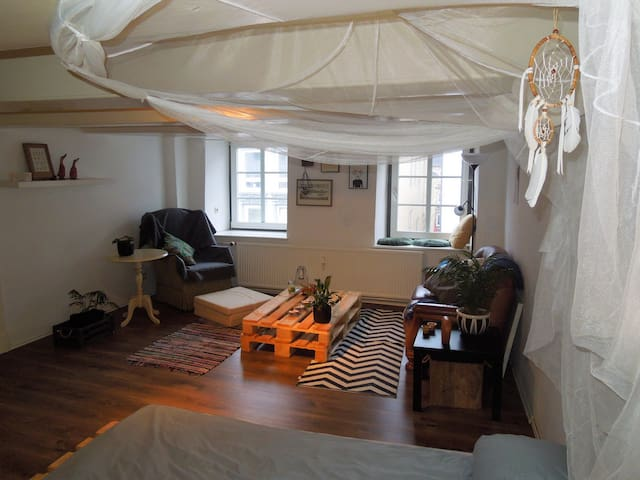 Gemütliche(s) Zimmer/ Wohnung in der Innenstadt - Flensburg - Apartment