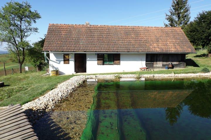 Ferienhaus Bioweinbau Oberkofler - Jennersddorf - Ház