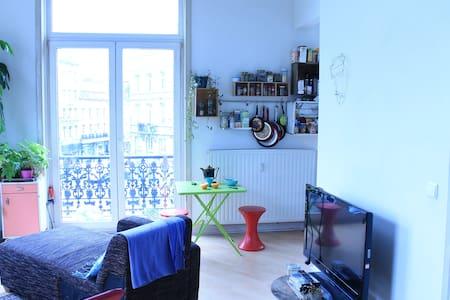 Grand appartement lumineux Barrière Saint Gilles - 聖吉爾