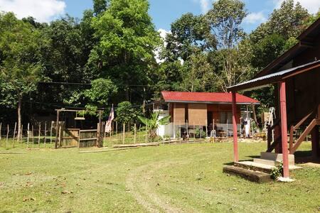Kenong Campsite