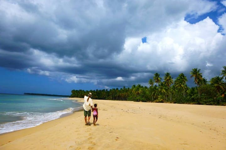 Visit incredible beaches from Jurassic Retreat.