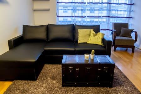 Spacious apartment near Arena - 2 BR, free parking - Zagreb