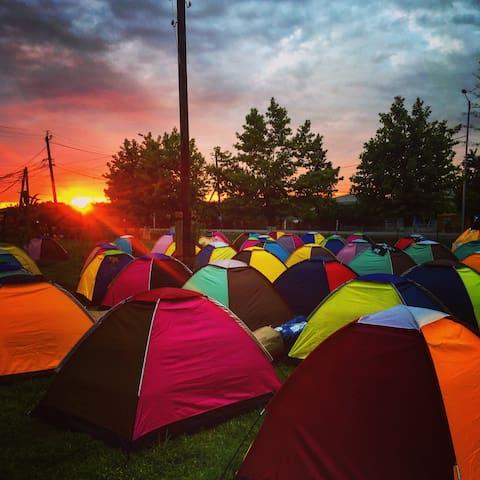 Anaklia Camping - cheapest GEM Fest accomodation!