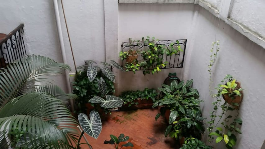 Rooms for Rent Heritage Guesthouse - Cali - House