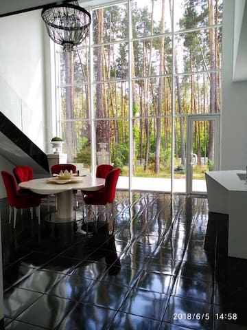 Modern house in the pinewood forest