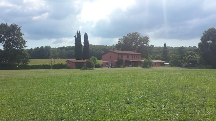 Accoglienti 3 miniappartamenti - Paganico - Pis