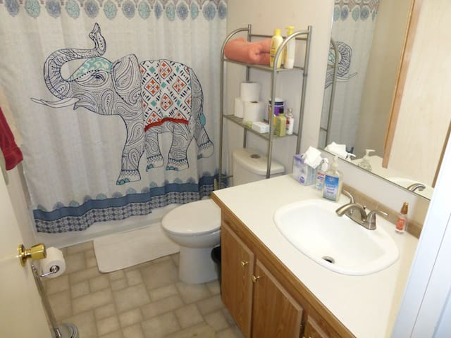 Bath is shared only with guests in 2nd bedroom