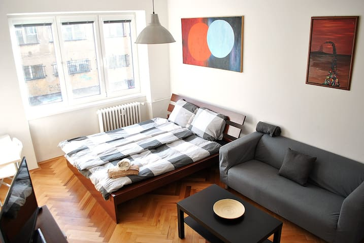 Central cozy private room, balcony, free parking - Praha - Apartamento