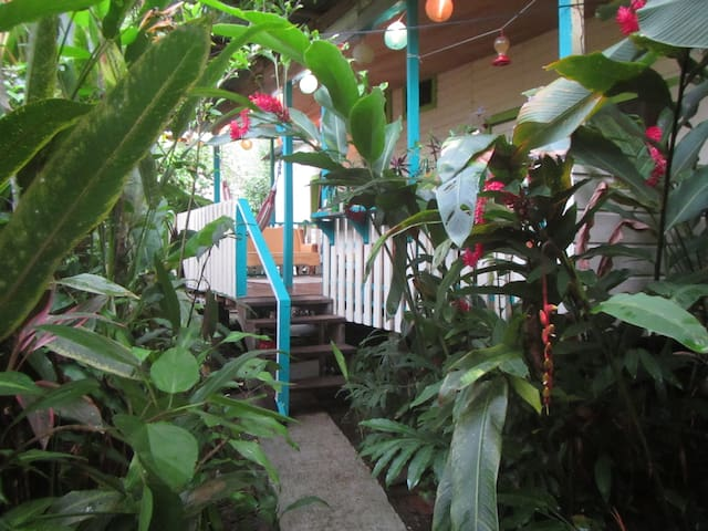 Cute Cabana with lush garden and bikes included! - Bocas del Toro Province - Apartment