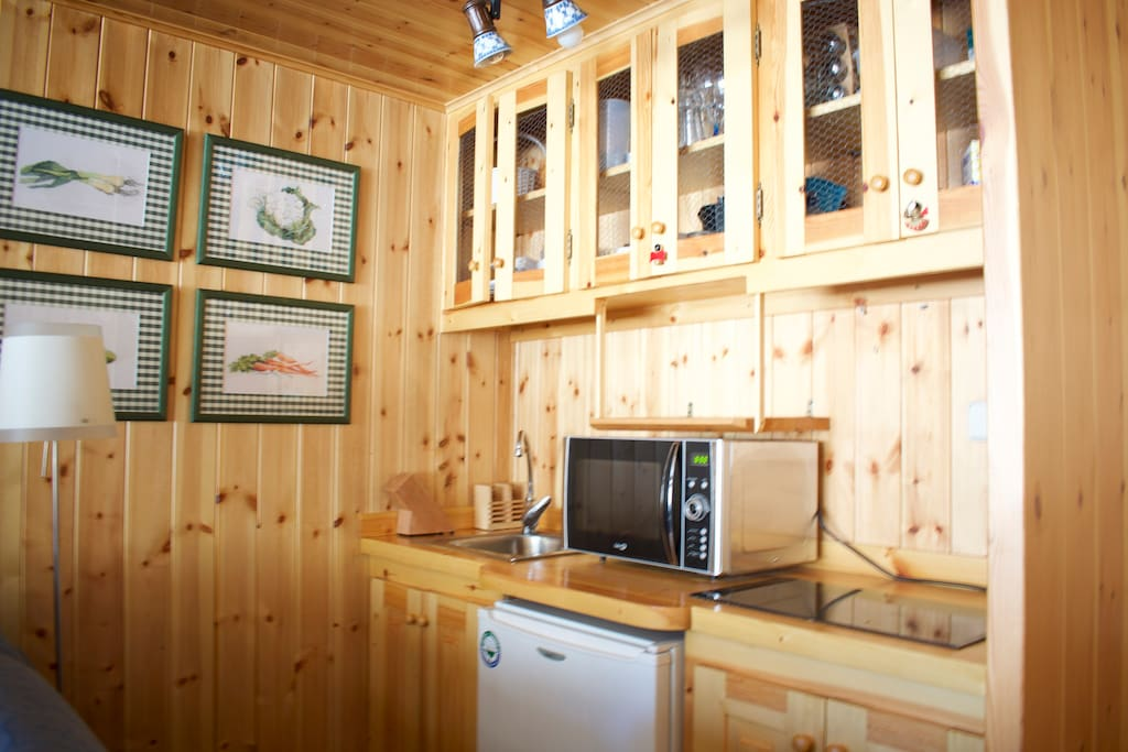 Small Kitchen with microwave, fridge and stove.