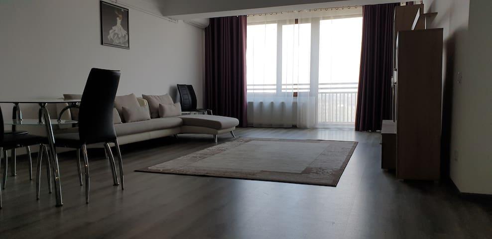 Panoramic Apartament - Mall Vitan