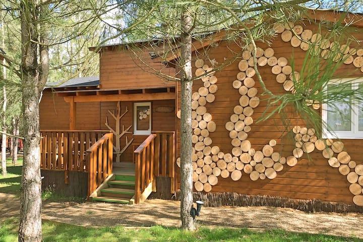 Chambre sous les pins