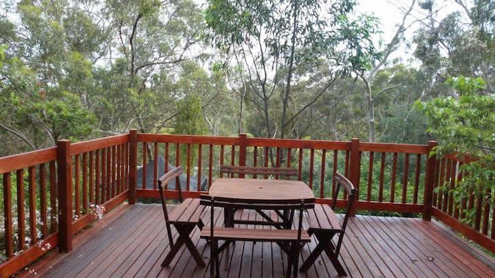 Hills friendly accommodation