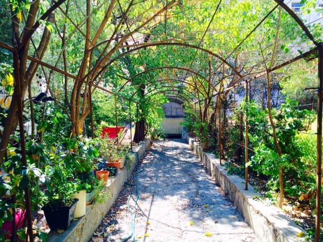 cosy single room with garden