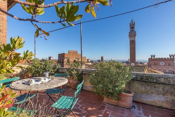 Dimora Di Pregio Con Altana E Terrazza Panoramica Flats For Rent In Siena Toscana Italy