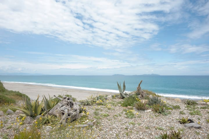 Caprifoglio home San Saba (fronte isole eolie)