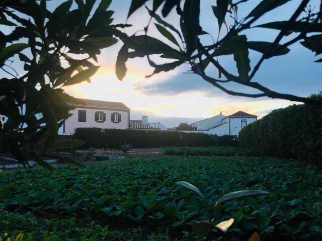 """""""Casas da Quinta"""" Ribeirinha-Ribeira Grande"""