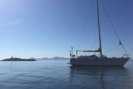 Velero para 6 personas en el puerto de Alcudia - Alcúdia - Boat