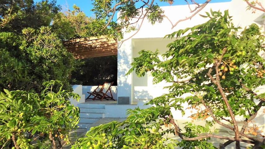 A beachfront mediterranean residence / Serifos
