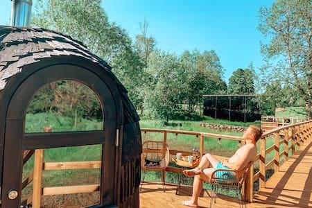 Riverbed inn ÖÖD mirror house & iglucraft sauna