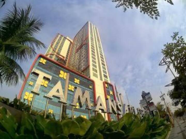 Disewakan Murah Apartment Papilio SBY Pusat Kota