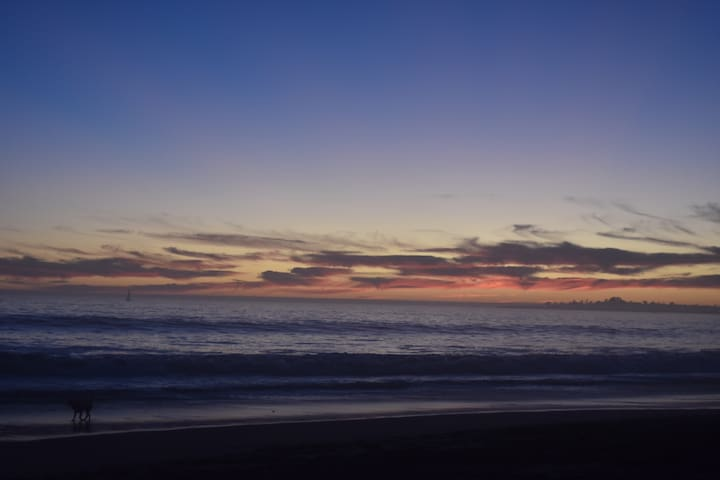 LOWEST $ Steps to beach, surf, PLEASURE PT, Dogs!