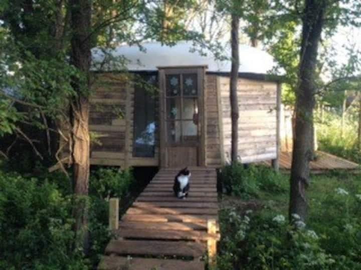 la cabane de ROBINSON...