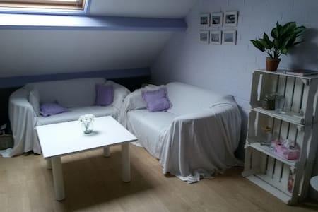 gezellige knusse bed&breakfast - Middelburg