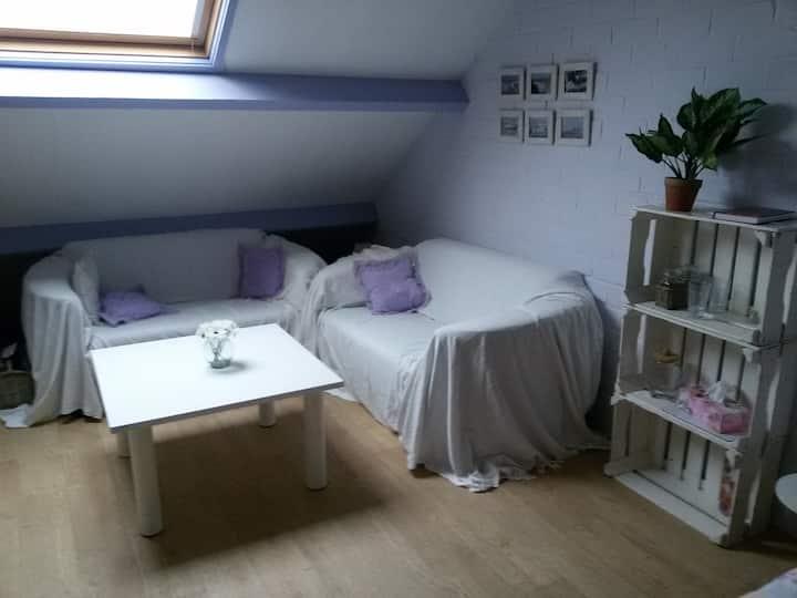 gezellige ruime zolderkamer