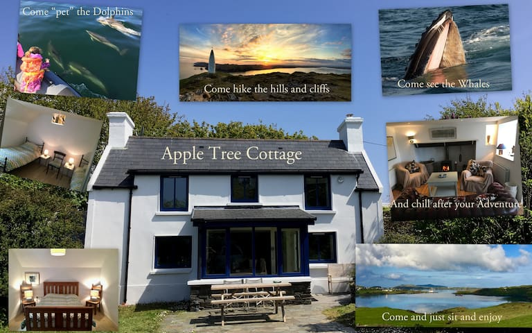 Apple Tree Cottage, heaven with a view.