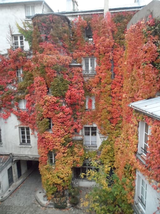 View from apartment window in Autumn