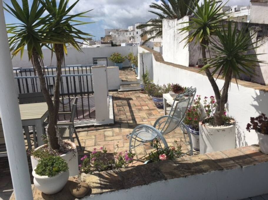 Our pretty roof terrace