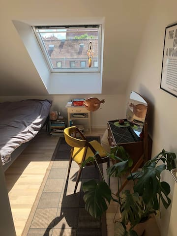 Room in new apartment, close to the city and beach