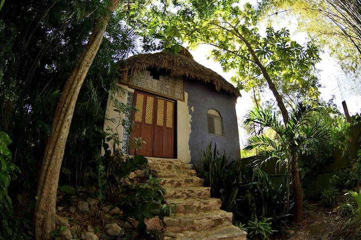 SOL - Acension in a Maya Oasis