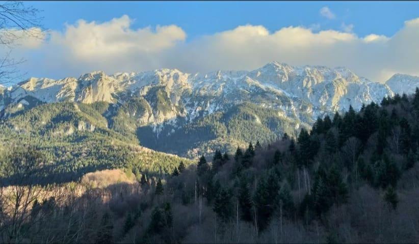 Aroa Mountain 2