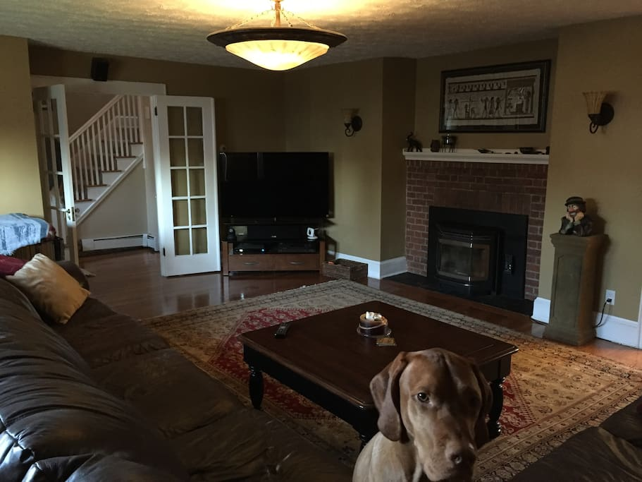 "Living room with 55"" TV and pellet stove insert"