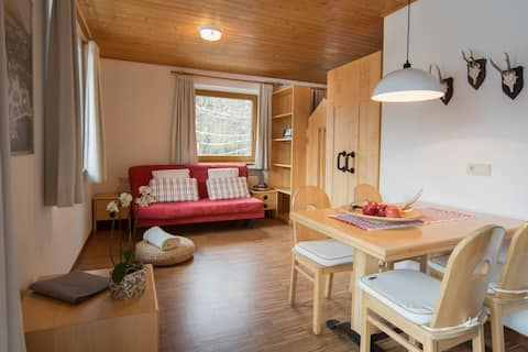 Lovely apartment (2 - 4 pax)