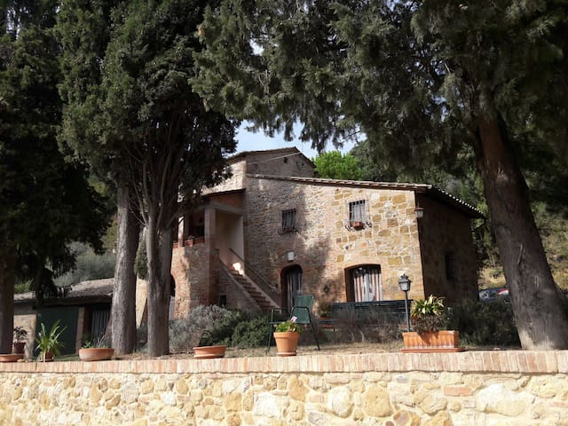 A lovelyTuscan Country Villa only for you