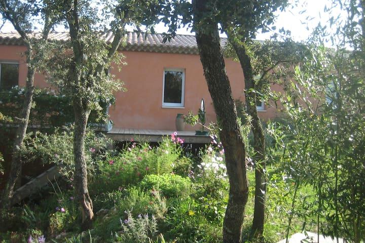Une maison au milieu des arbres - Saint-Siffret - Bed & Breakfast