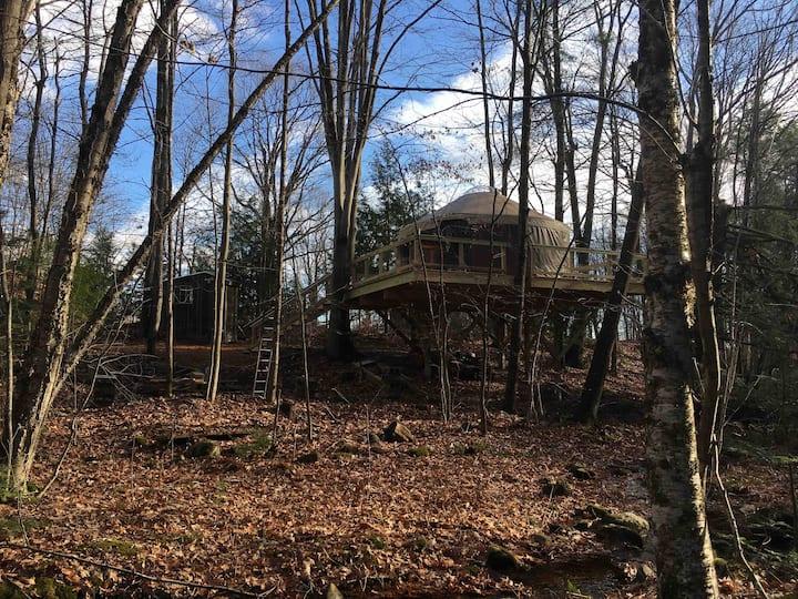Tree Yurt