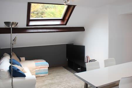 Appartement entièrement rénové mansardé - Chaudfontaine