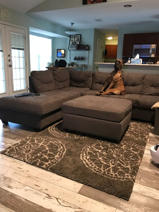 Living Room (mastiff not included in rental)