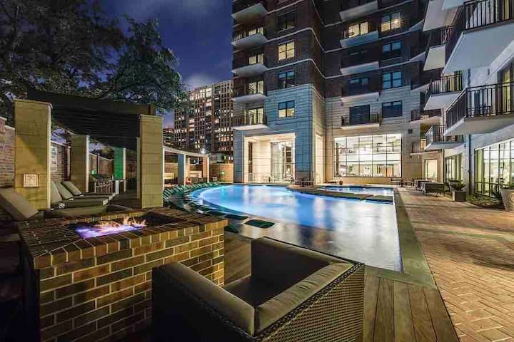 Upscale Highrise Condo - Museum District/Downtown