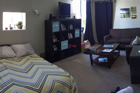 Economy One Bed, Half Bath in Downtown - Macomb