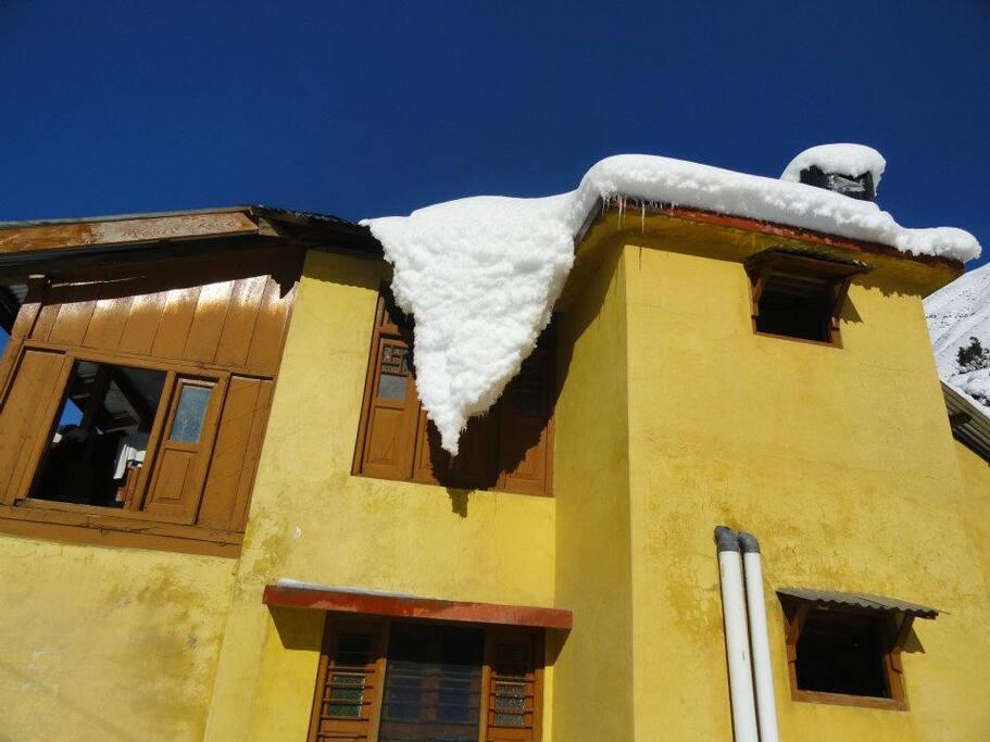 Hanging Snow