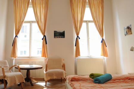 GENEROUS ROOM IN PRAGUE CENTRE - Praga - Pis